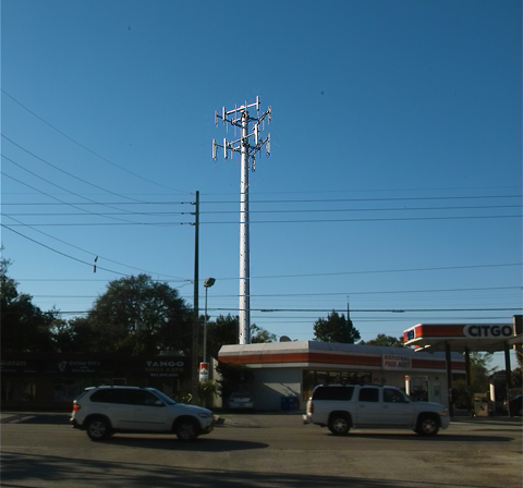 Proposed Cellular Tower in Audubon Park